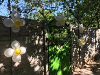 Мероприятия, посвященные Дню семьи, любви и верности